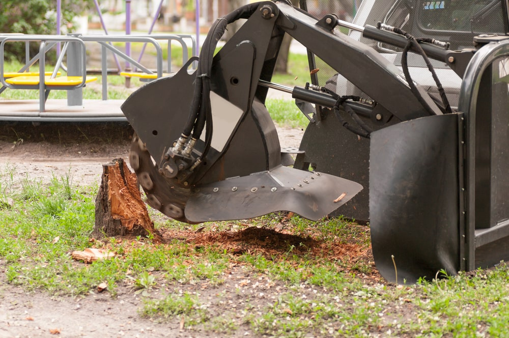 Citrus heights stump grinding